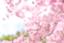id:hiro8988