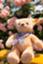 id:hiyama2016