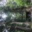 id:hokehoke48