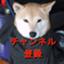 id:hokusou_circuit