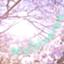 iTakuma-DB5
