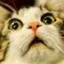 id:icats