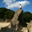 id:icchi-kansou