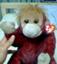 id:ichii386