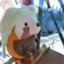 ichiko-disneyblog