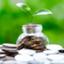 id:individual-investor