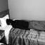 id:individualKnight