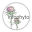 id:infophyto