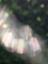 id:iris-crystal