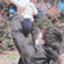 id:irohatirinuru