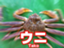 ittan-ichigojam