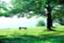 id:izawaharuaki