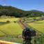 id:japanmemory3425