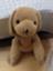 id:jinsblog