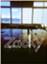 id:jp-zacky