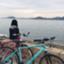 kaeru_no_zatudann