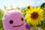 id:kaiyo56