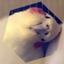 id:kamearuki