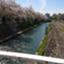 id:kanagawakentyoshi