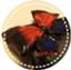 id:kaorin-box