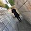 id:kaorin_k0911