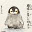 id:katsuyukikun
