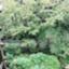id:kawazusirazu