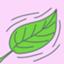 id:kayano_set