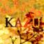 kazutoshimitumoto