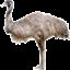 id:kengyonouka