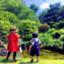 kiki_company