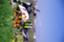 id:kimomen-0314