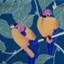 kimonohajimekaeru