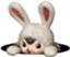id:kimura_m_29