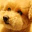 id:kiroku-mania