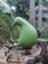 id:kiwi13
