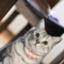 id:koburoku36