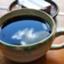 koffeelife