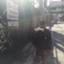 id:koki-miyagawa-0603