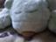 id:kuchikaketashelf
