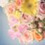 id:kumagoro_morino