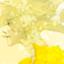 id:kuraxxitexkura