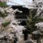 kyotomichi