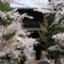 id:kyotomichi