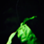 id:kyoutukigakirei
