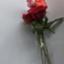 id:lapislazuliruriiro