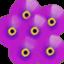 id:lemonbaby