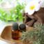 id:luculia-aroma