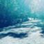 id:lur_910