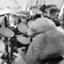 id:maigo-music